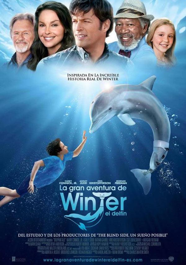 La gran aventura de Winter el delfín: Historia de superación para toda la familia