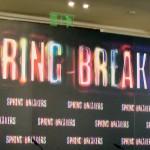 Rueda de prensa Spring Breakers