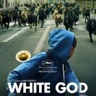 White God - Poster