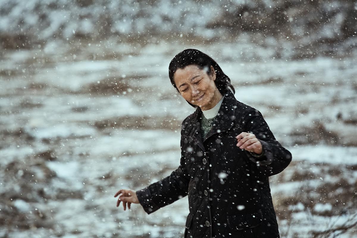 Tao Zhao en Más allá de las montañas