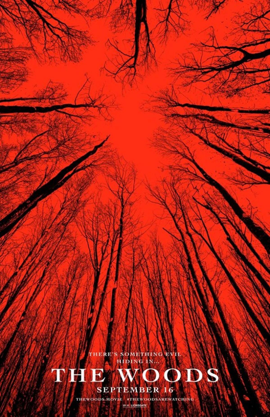 The Woods  (Blair Witch) - Teaser poster USA