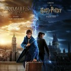 Harry Potter Film Fest - Poster