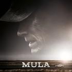 Poster - Mula